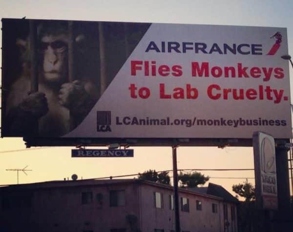 Pub anti Air France de PETA aux USA