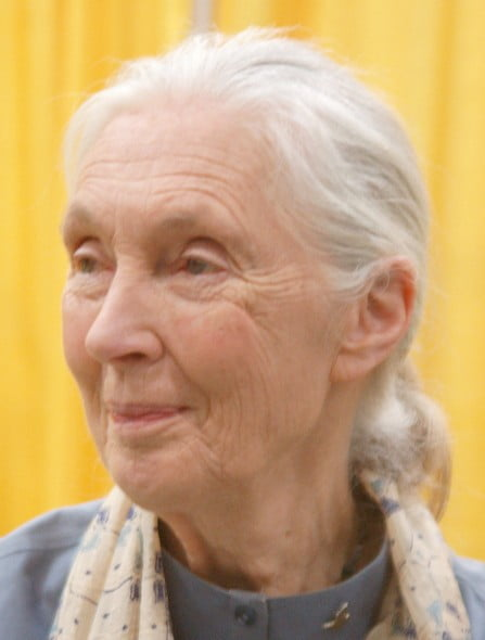 Air France, Jane Goodall écrit à de Juniac